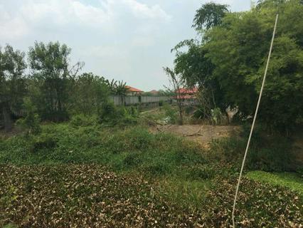 ขายที่ดินเปล่า 279 ตรว ราคาถูก บางใหญ่ นนทบุรี  รูปที่ 6