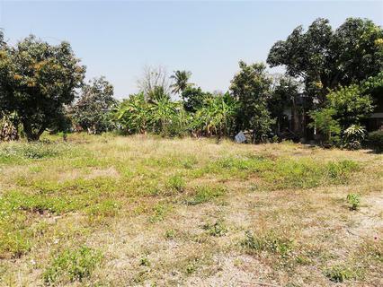 SRP02ขายที่ดินเปล่ามีเนื้อที่0-3-70.2ไร่ติดทางสาธารณประโยชน์ รูปที่ 6