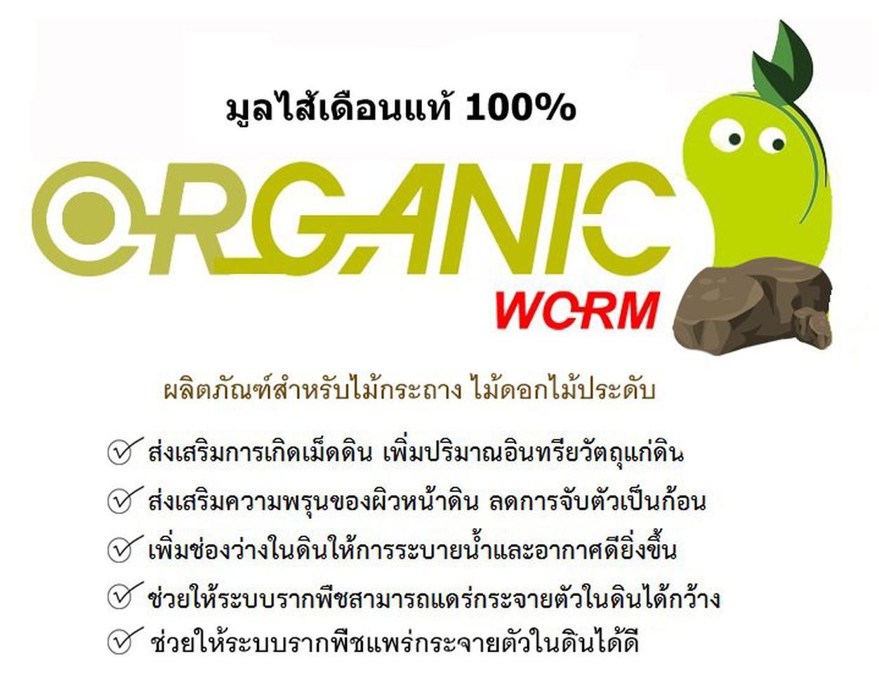 มูลไส้เดือนแท้ 100% ตรา Organic Worm รูปที่ 2