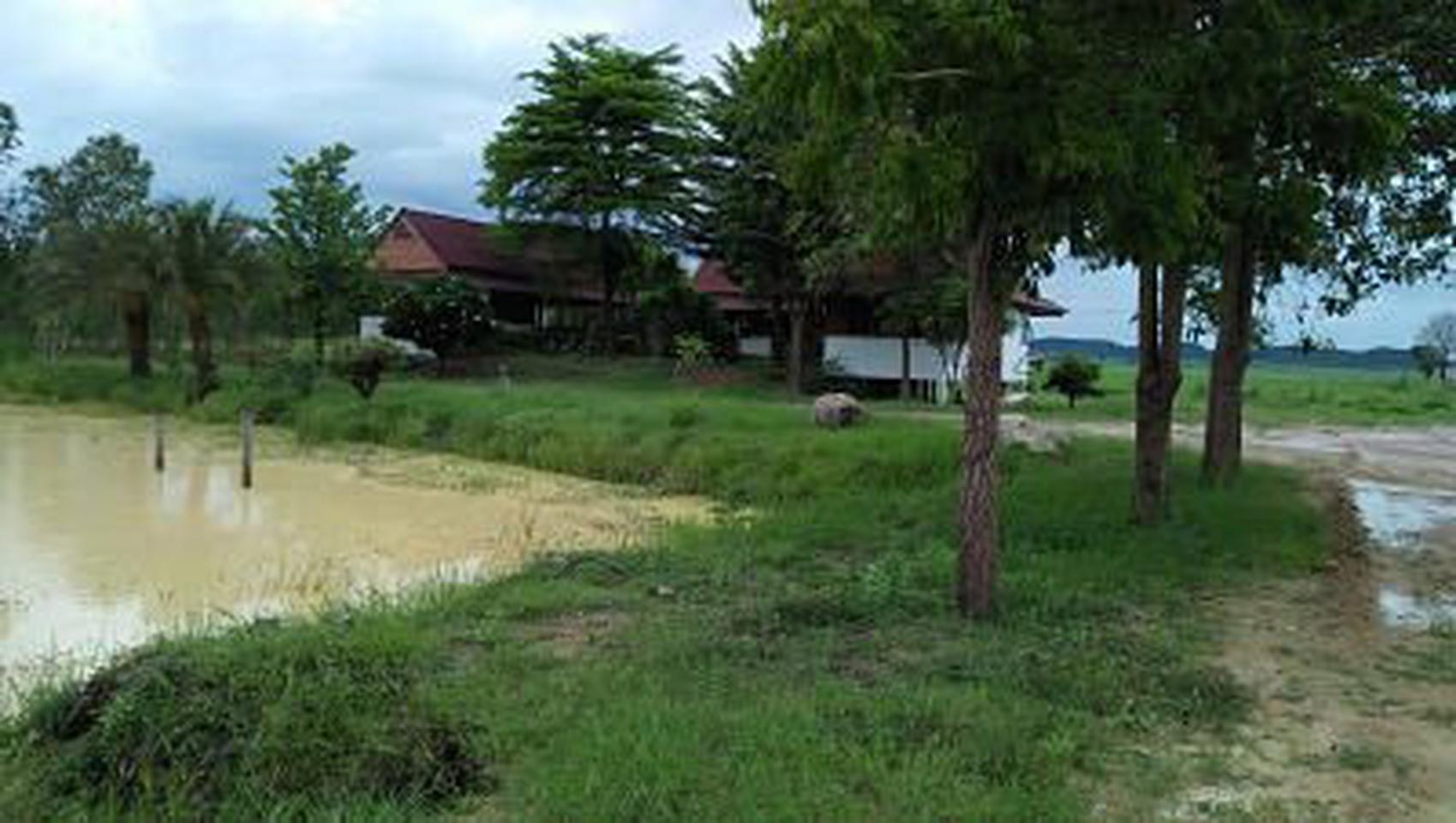 ขายที่ดิน แปลงใหญ่  อำเภอท่าม่วง กาญจนบุรี รูปที่ 4