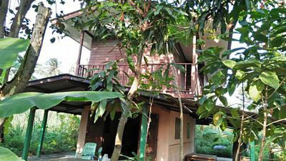 Sale land and small house can adapt will be Home stay  รูปที่ 5