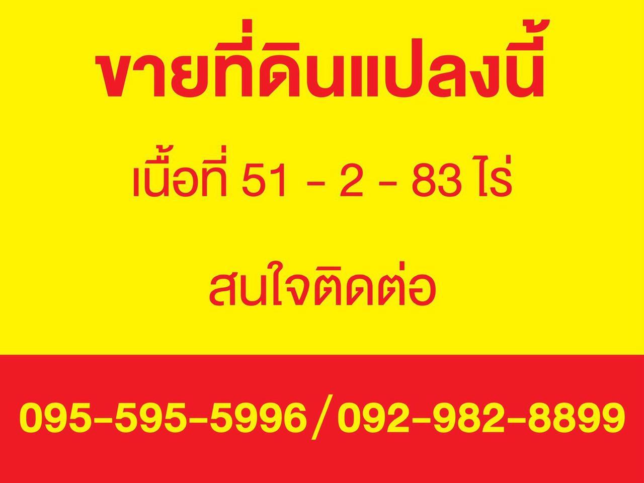 ขายที่ดิน อำเภอบ่อทอง จังหวัดชลบุรี ติดถนนสาย 3340 รูปที่ 6