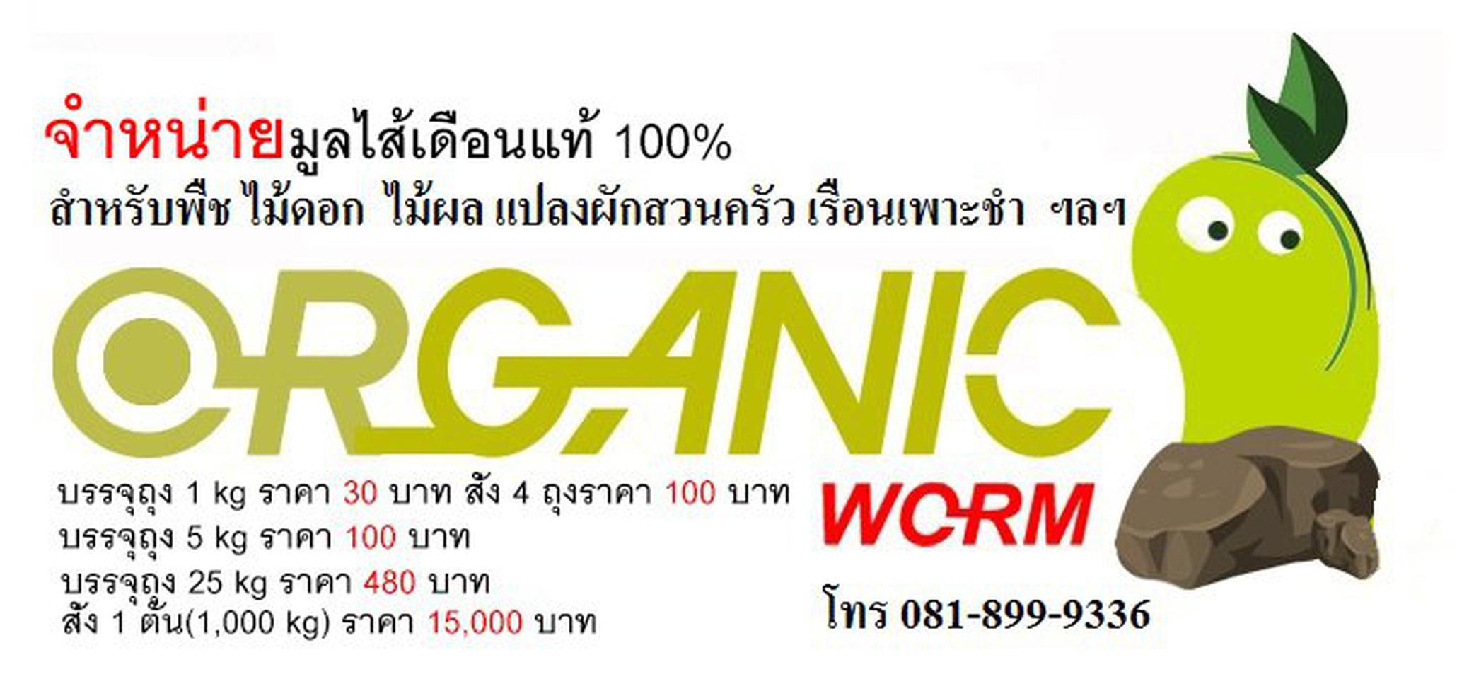 มูลไส้เดือนแท้ 100% ตรา Organic Worm รูปที่ 1