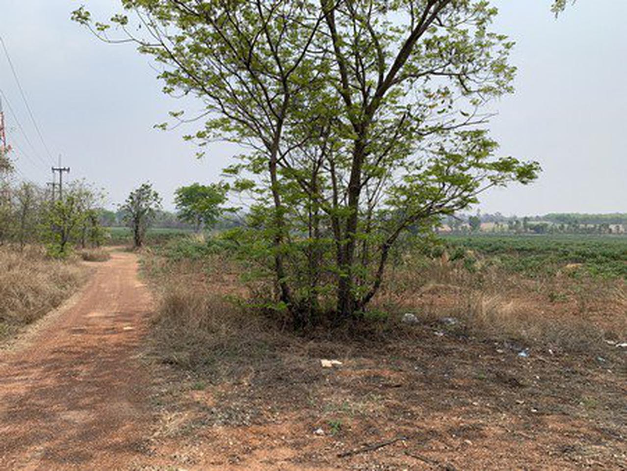 ขายที่ดินเปล่า จังหวัดอุดรธานี อยู่บนถนนมิตรภาพ เนื้อที่ 52 ไร่ 40 ตารางวา รูปที่ 3