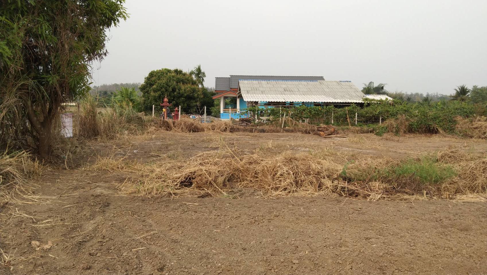 ขายที่ดิน สำหรับที่อยู่อาศัย และทำการเกษตร รูปที่ 2