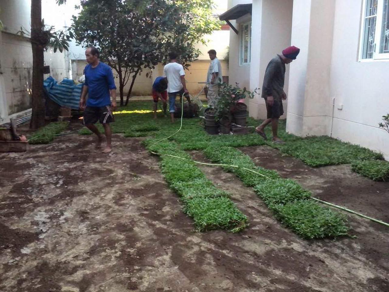 ขายหน้าดิน ถมที่ ถมดิน เสริมหน้าดิน สำหรับจัดสวน ปลูกหญ้า ปลูกต้นไม้ เกรดA ราคาถูก รูปที่ 3