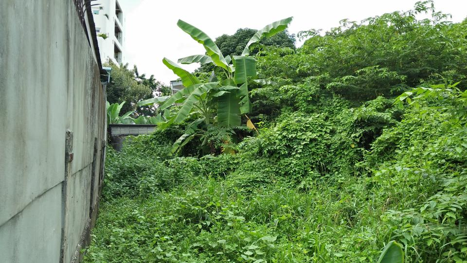 Rent   Smaller  land long term suitable for  project Phrakha รูปที่ 4