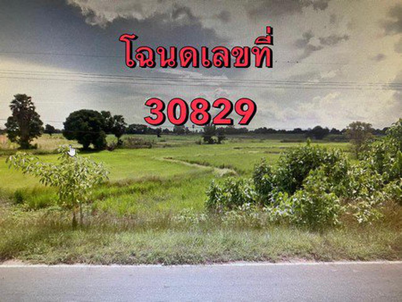 ขายที่ดินเปล่า ติดถนนหมายเลข 2069 จังหวัดชัยภูมิ เนื้อที่ 64 ไร่ 1 งาน 72 ตารางวา รูปที่ 1