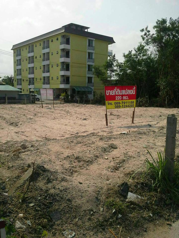 Sale of land plot 220 sqw. Or about 880 sqm. รูปที่ 1