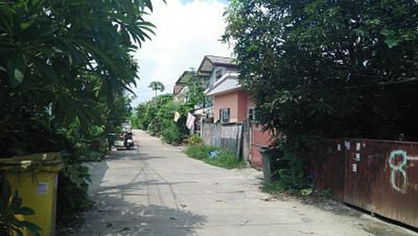 ย่านถนนเทพารักษ์-หนามแดง-สำโรง พร้อมต้นมะม่วงใหญ่หลายสิบปี ร รูปที่ 6