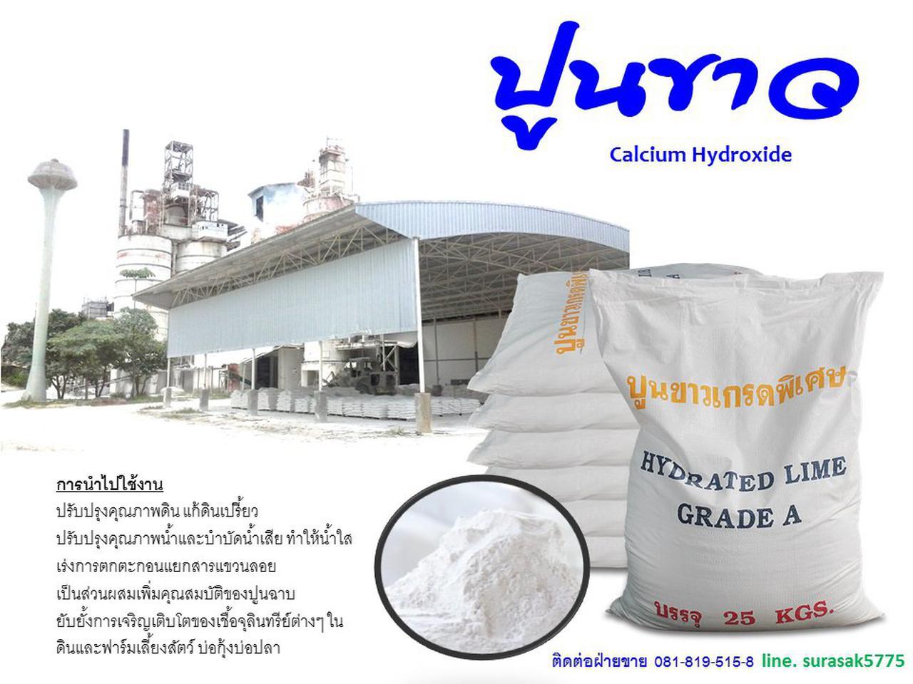 Calsium Hydroxide รูปที่ 1