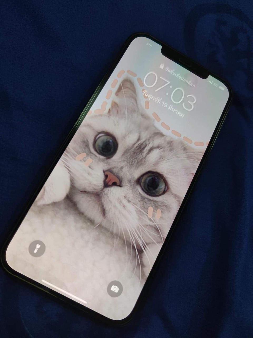 Iphone 12 pro max รูปที่ 1