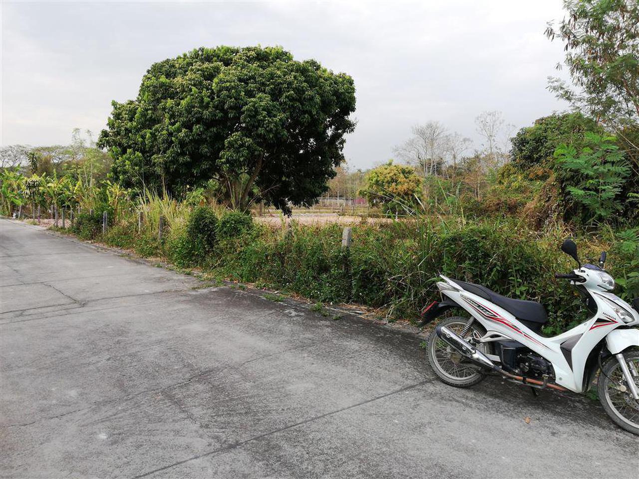 SS158ขายที่ดินเปล่าเนื้อที่0-2-09ไร่ติดถนนคอนกรีตที่เชื่อมกั รูปที่ 2