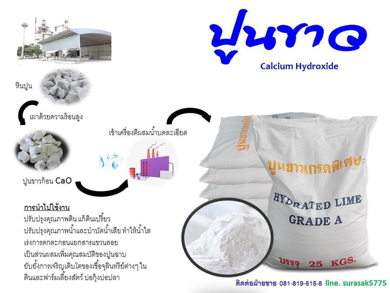Calsium Hydroxide รูปที่ 4