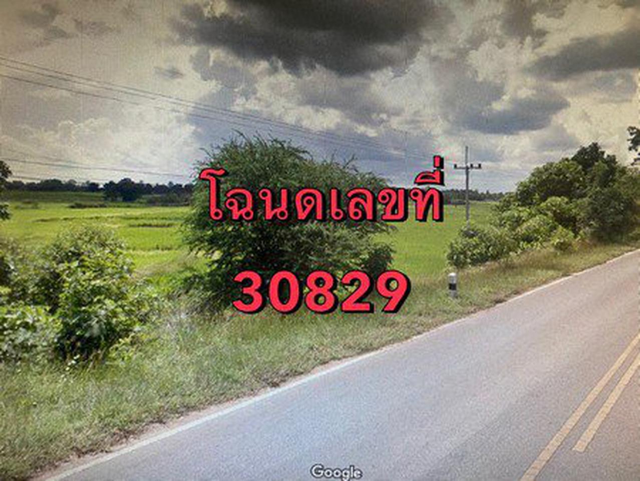ขายที่ดินเปล่า ติดถนนหมายเลข 2069 จังหวัดชัยภูมิ เนื้อที่ 64 ไร่ 1 งาน 72 ตารางวา รูปที่ 2