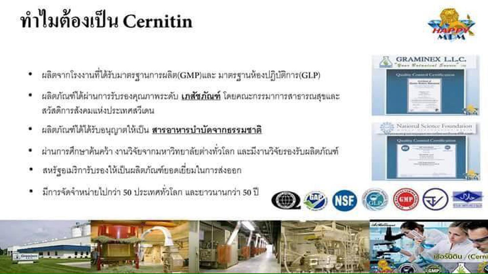 CERNILTON เซอร์นิลตัน (สีน้ำตาล),ผลิตภัณฑ์เสริมอาหารสกัดชนิด รูปที่ 3
