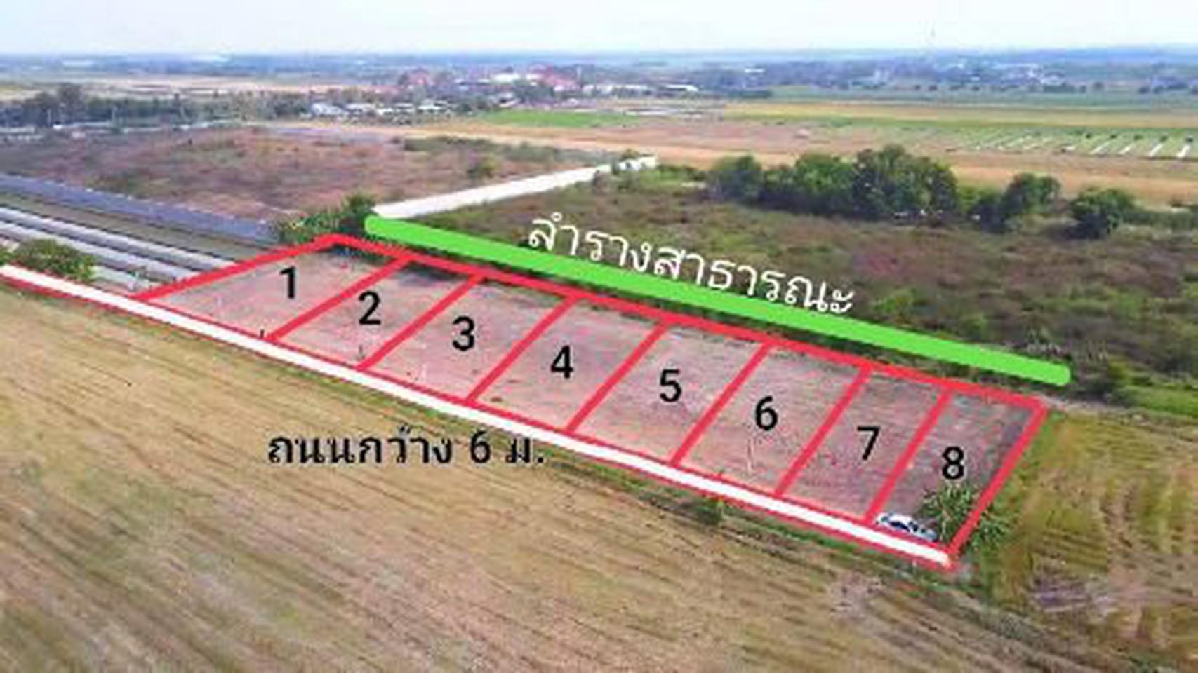 ขาย  ที่ดิน ที่สวยทำเลดี ที่ดินแบ่งขาย 100ตรว  ที่ดินสวยที่คุณสามารถเป็นเจ้าของได้ รูปที่ 1