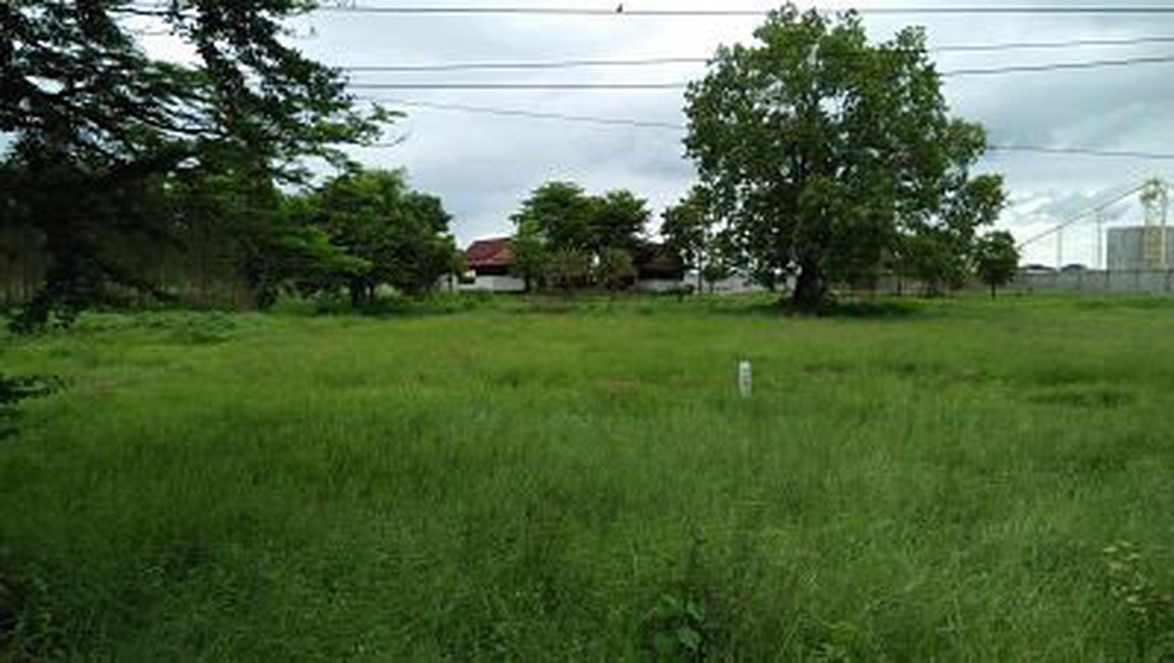 ที่ดิน แปลงใหญ่  อำเภอท่าม่วง กาญจนบุรี เนื้อที่ 446 ไร่  รูปที่ 4
