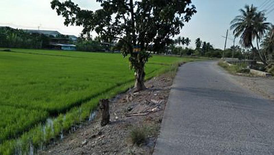 Sale land and small house can adapt will be Home stay  รูปที่ 6