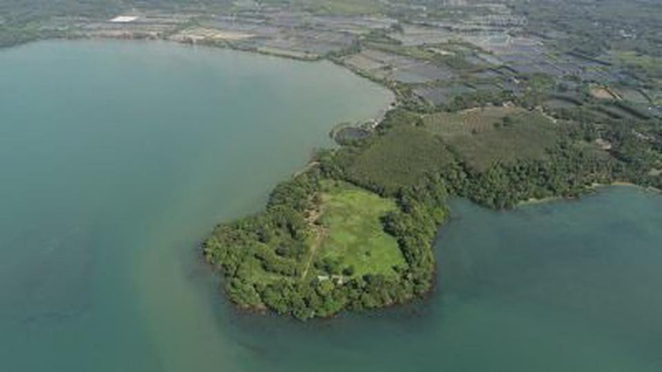 Private island for sale so  big plot of land 37 Rais sea view รูปที่ 3