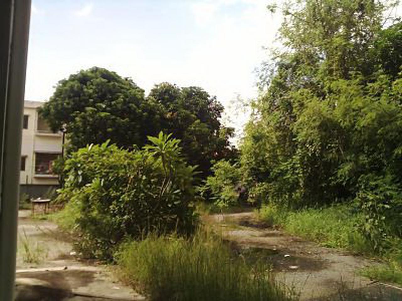 ขายที่ดินไร่กว่า อ่อนนุช/ Sale Land with old  house On-Nut R รูปที่ 4