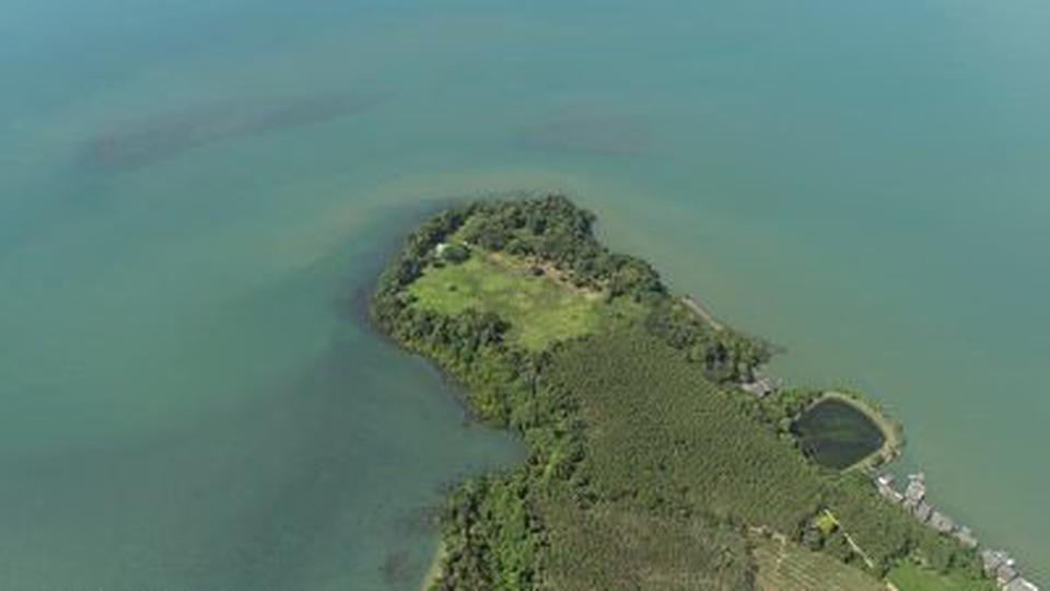 Private island for sale so  big plot of land 37 Rais sea view รูปที่ 6