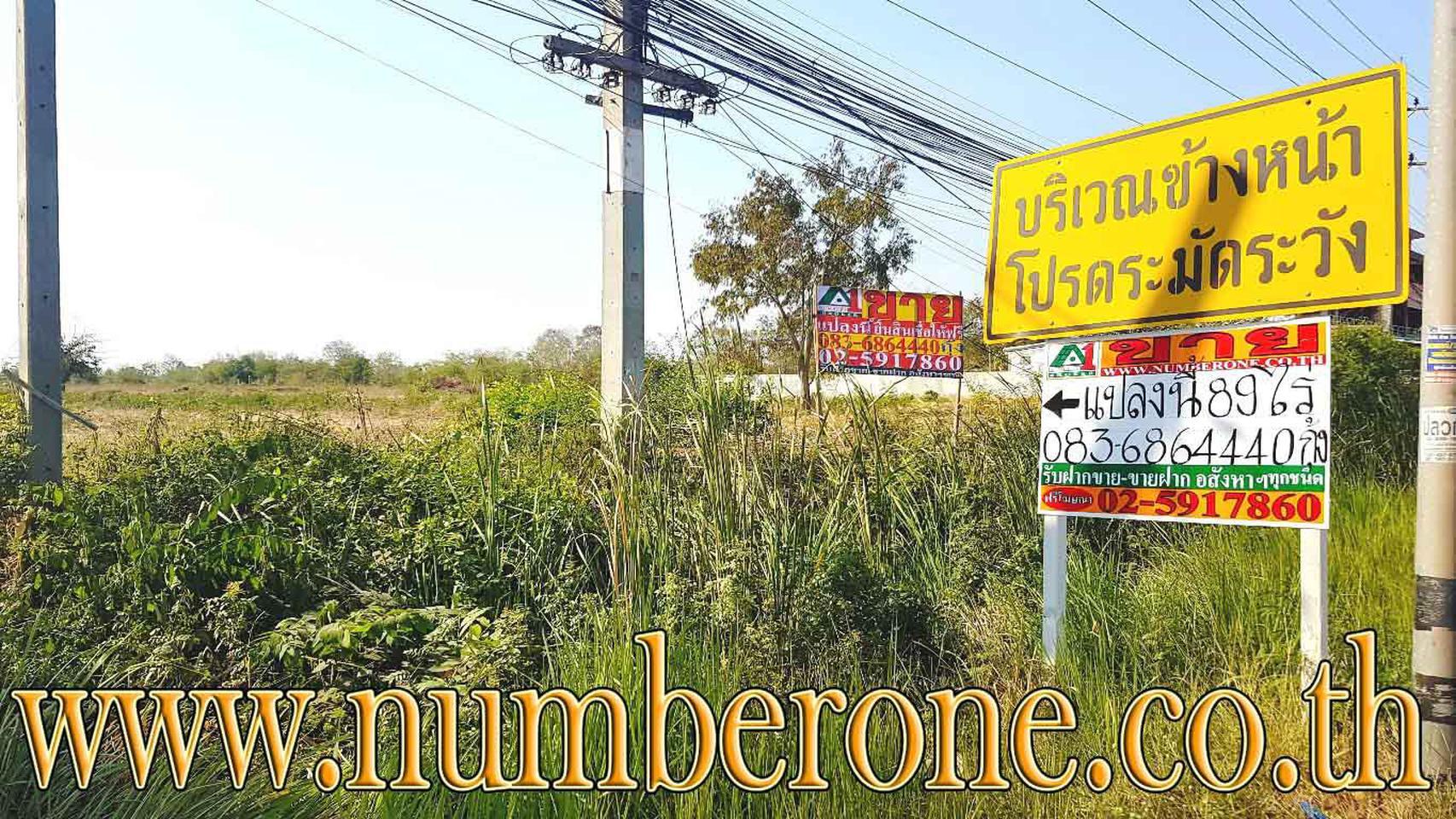 ขายที่ดินน่าลงทุน ถ.ชัยภูมิ-สีคิ้ว อ.เมืองชัยภูมิ จ.ชัยภูมิ รูปที่ 3