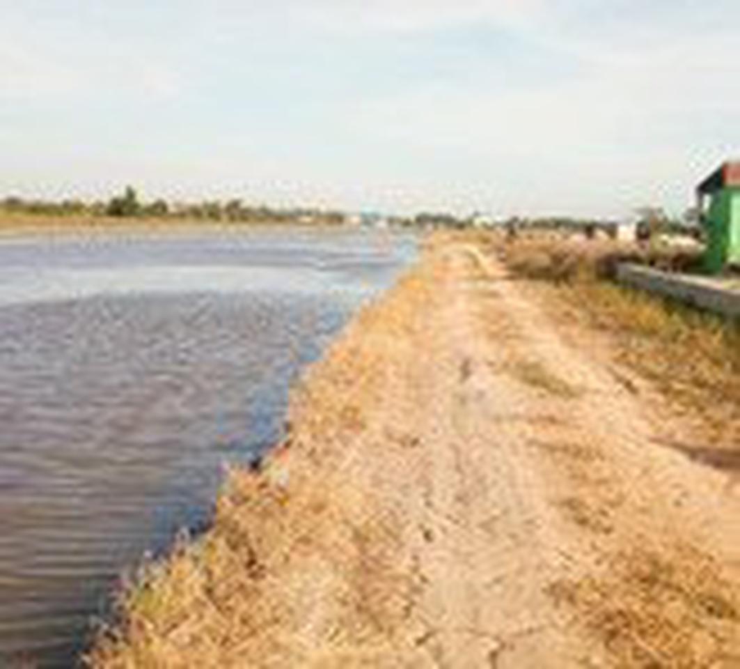 ขายที่ดินเปล่าในถนนลำลูกกาคลอง 9 จังหวัดปทุมธานี รูปที่ 5