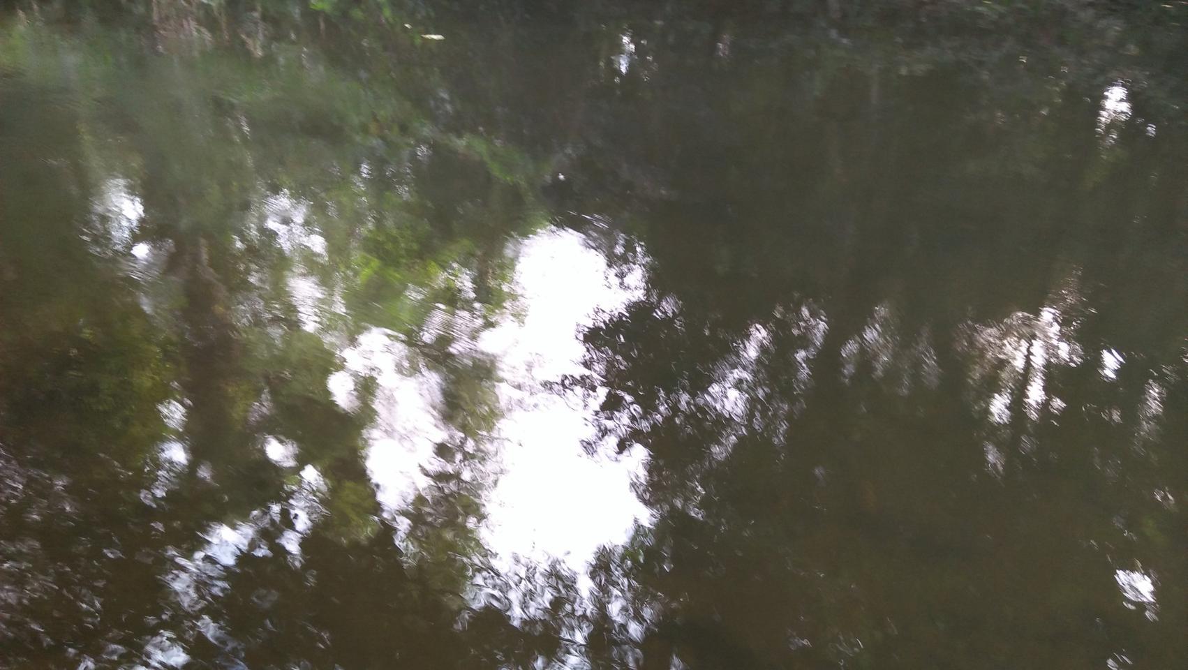ที่ดินพร้อมสวนขนาดใหญ่ ติดห้วยลำธาร แหล่งธรรมชาติ น่าอยู่มาก รูปที่ 6