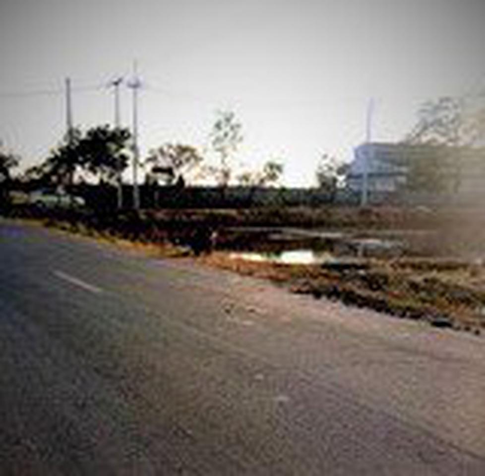 ขายที่ดินเปล่าในถนนลำลูกกาคลอง 9 จังหวัดปทุมธานี รูปที่ 4