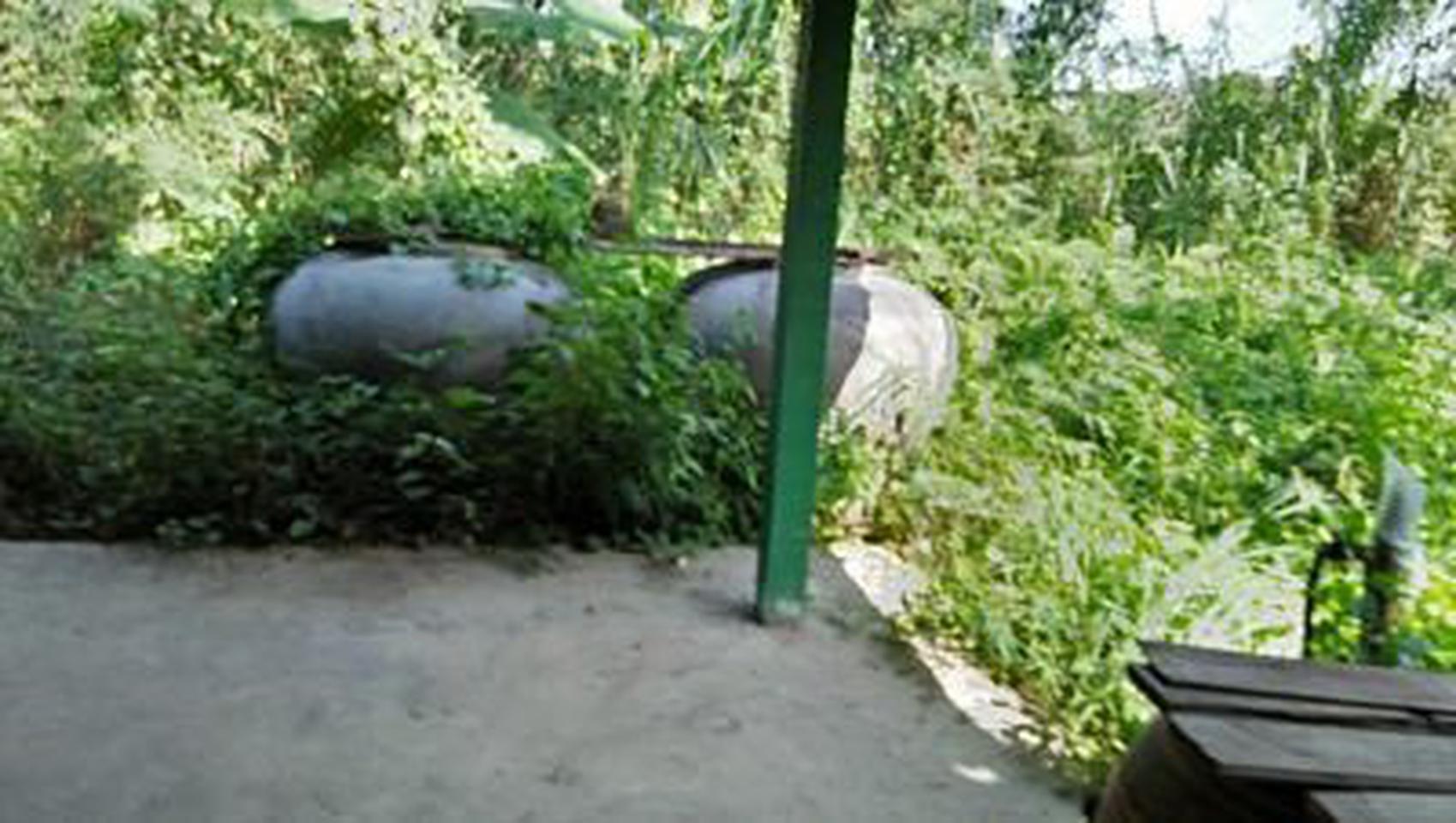 ที่ดินสวนป่าธรรมชาติติดลำคลอง ร่มรื่น บรรยากาศชานเมือง โฉนด  รูปที่ 4