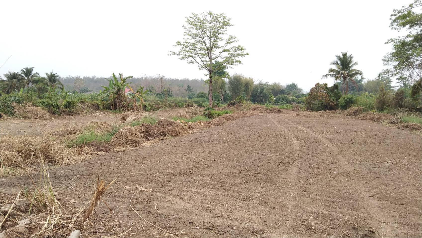 ขายที่ดิน สำหรับที่อยู่อาศัย และทำการเกษตร รูปที่ 1