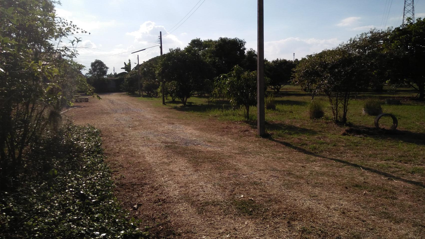 ที่ดินพร้อมสวนขนาดใหญ่ ติดห้วยลำธาร แหล่งธรรมชาติ น่าอยู่มาก รูปที่ 4