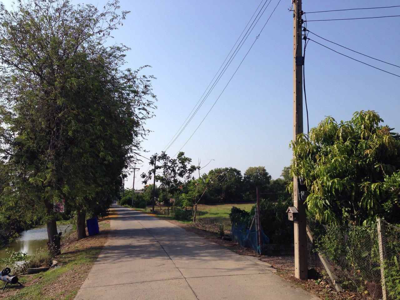 ขายที่ดินเปล่า 11 ไร่ 12 ตารางวา สามโคก-เสนา ปทุมธานี ใก้ลถนนวงแหวนตะวันตก รูปที่ 6