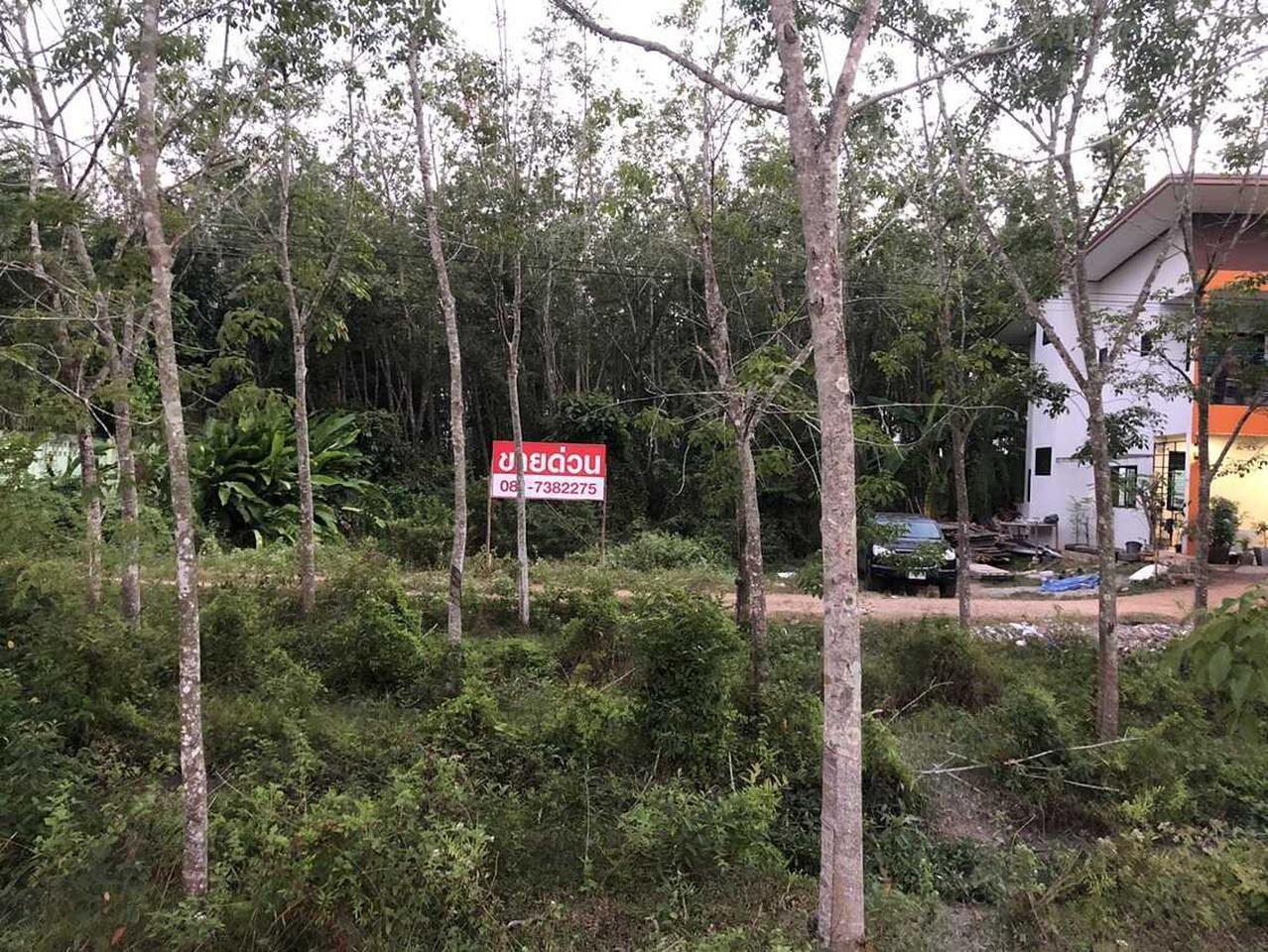 ขายด่วน!!! ที่ดิน พื้นที่ขนาด 94 ตารางวา บ้านหนองนายขุ้ย ไม่ไกลจากถนนใหญ่สายลพบุรีราเมศวร์ อ.หาดใหญ่ จ.สงขลา รูปที่ 6