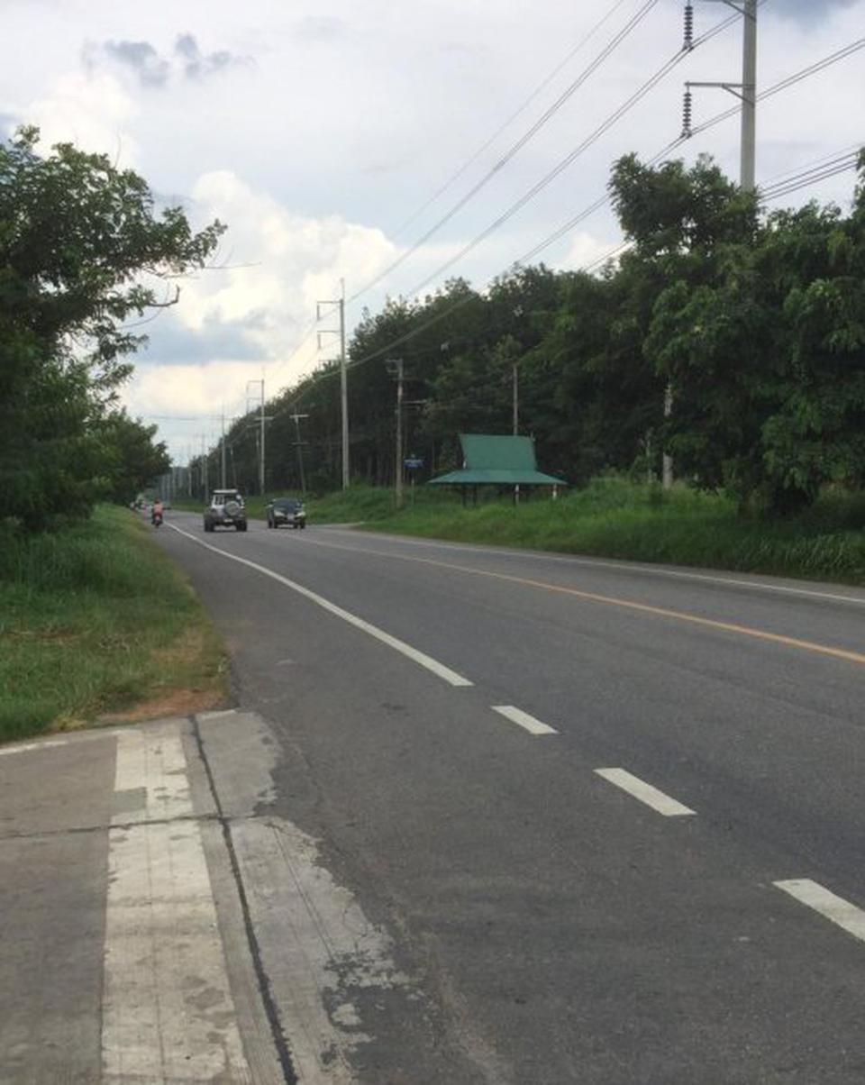 ขายที่ดิน อำเภอบ่อทอง จังหวัดชลบุรี ติดถนนสาย 3340 รูปที่ 2