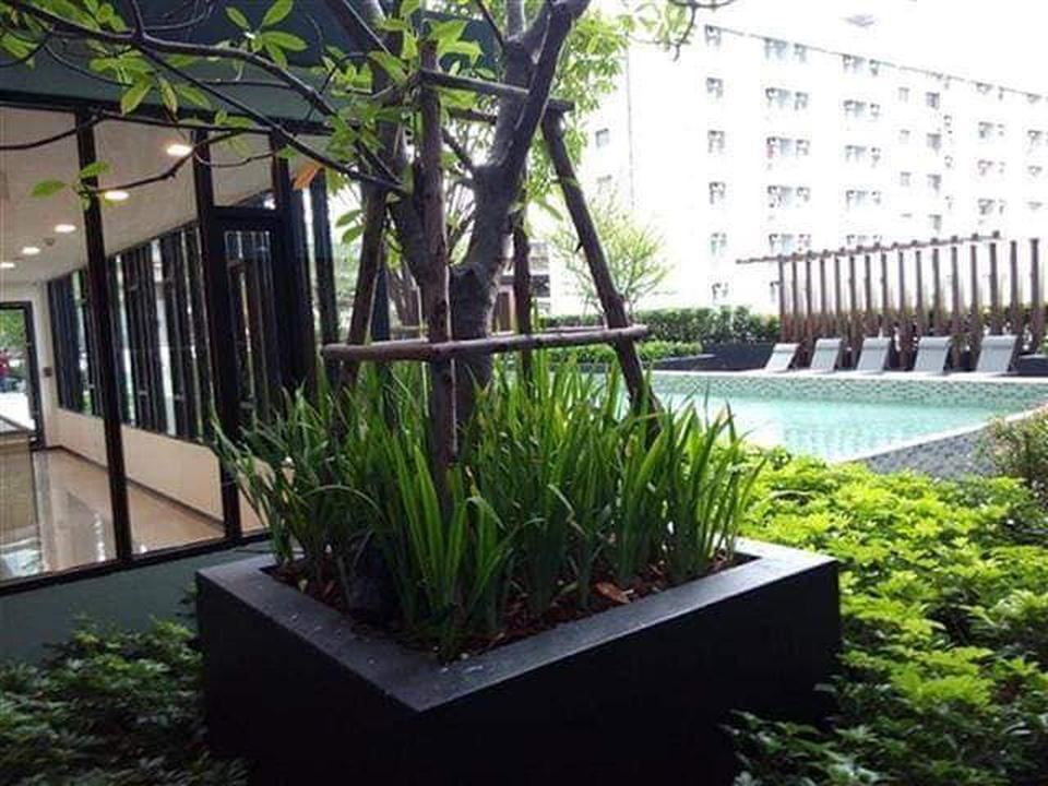 For rent   The Base rama 9 รูปที่ 1