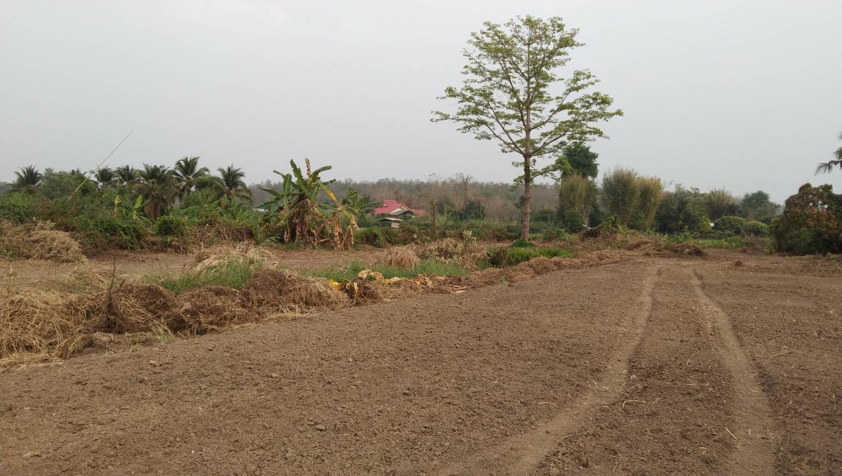 ขายที่ดิน สำหรับที่อยู่อาศัย และทำการเกษตร รูปที่ 6