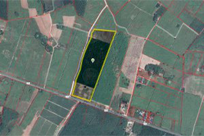 ขายที่ดิน อำเภอบ่อทอง จังหวัดชลบุรี ติดถนนสาย 3340 รูปที่ 1