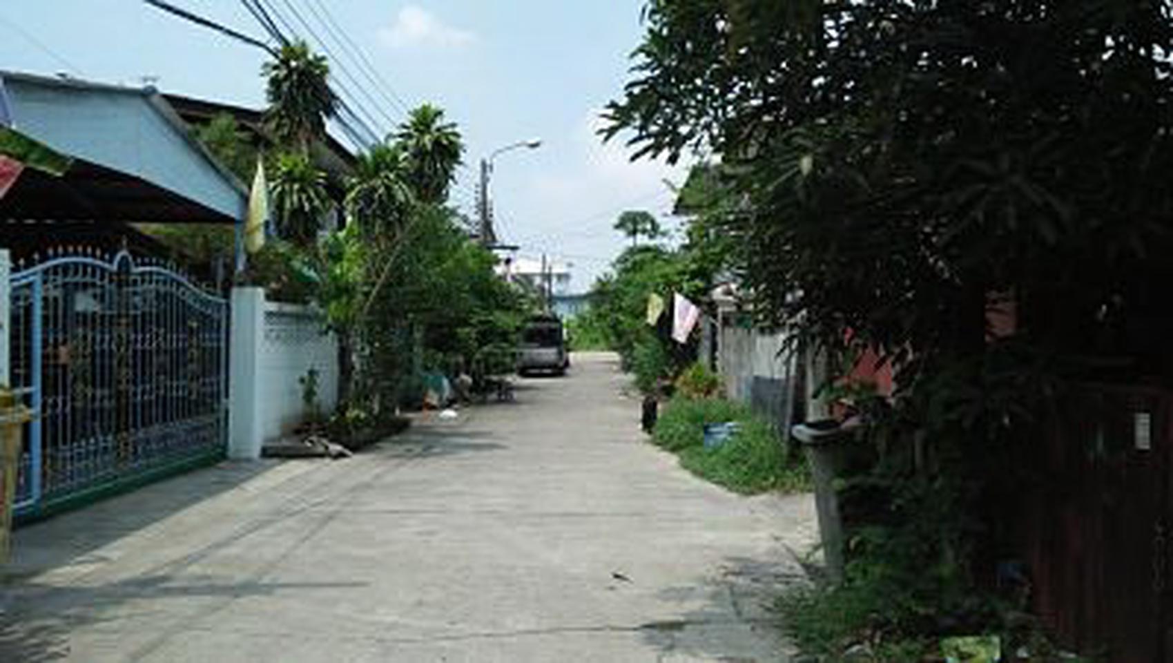 ย่านถนนเทพารักษ์-หนามแดง-สำโรง พร้อมต้นมะม่วงใหญ่หลายสิบปี ร รูปที่ 3
