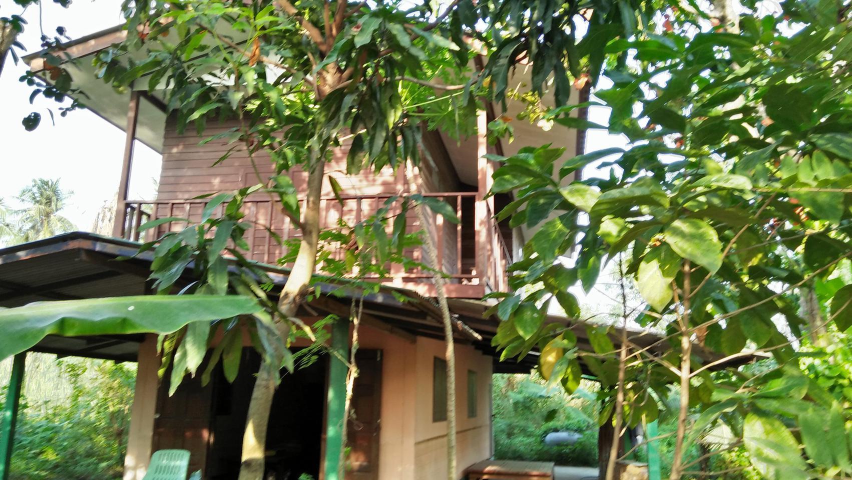 ขายสวนไร่พร้อมบ้านไม้เก่าติดลำคลอง ร่มรื่น ใกล้ถนนพุทธมณฑลสา รูปที่ 3