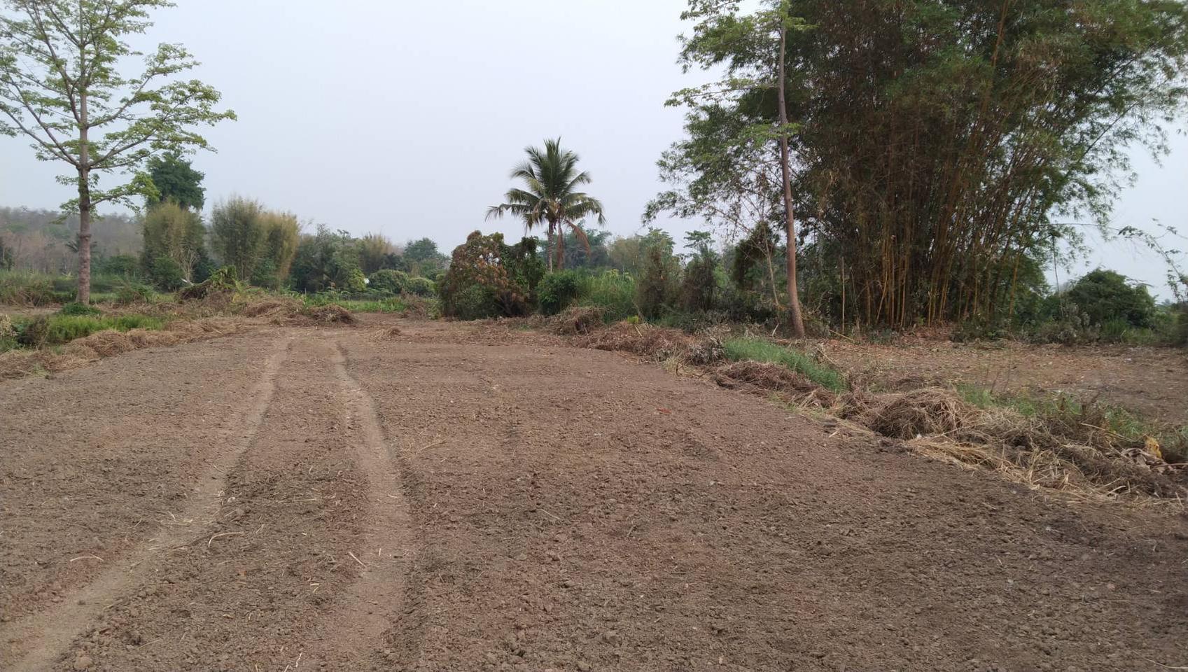 ขายที่ดิน สำหรับที่อยู่อาศัย และทำการเกษตร รูปที่ 4