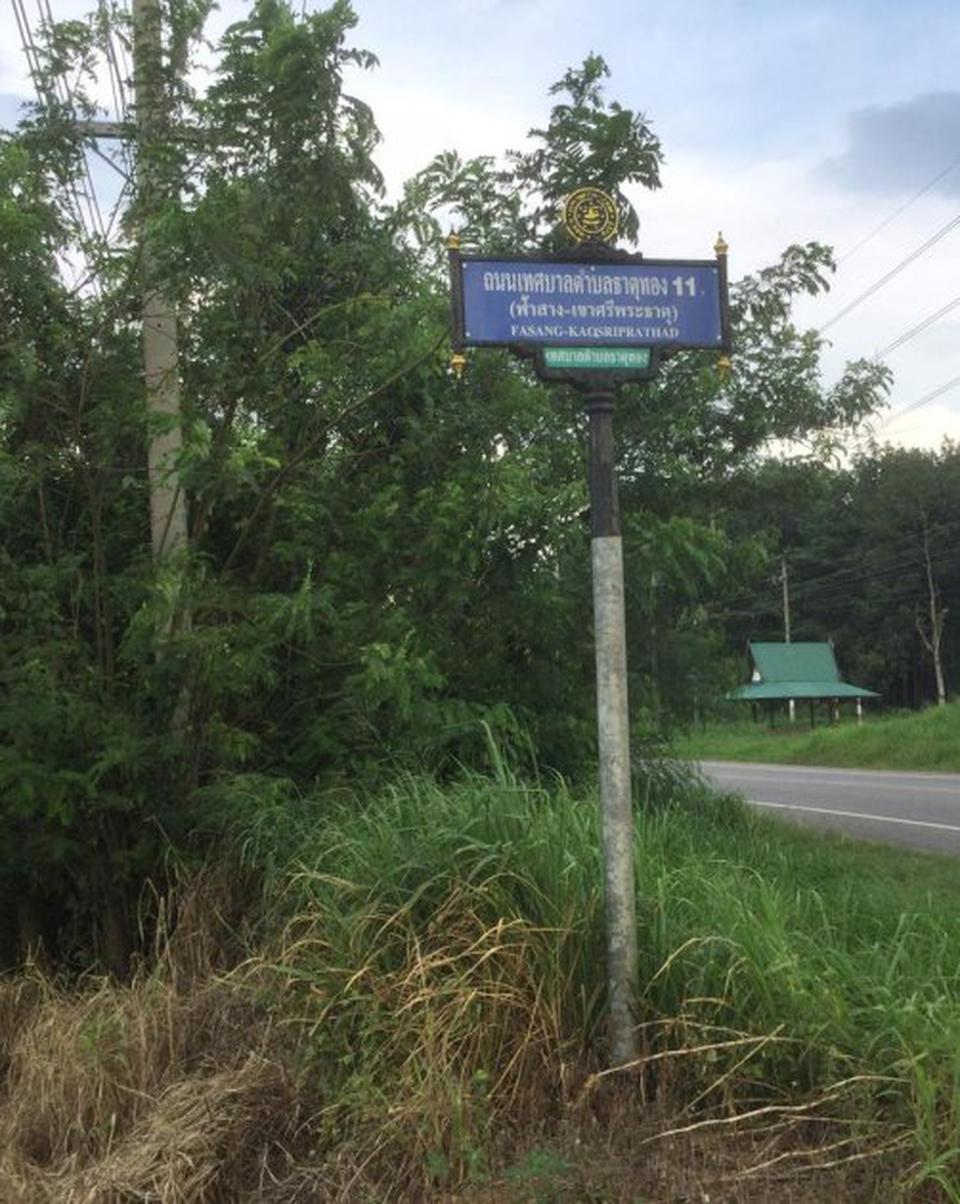 ขายที่ดิน อำเภอบ่อทอง จังหวัดชลบุรี ติดถนนสาย 3340 รูปที่ 3