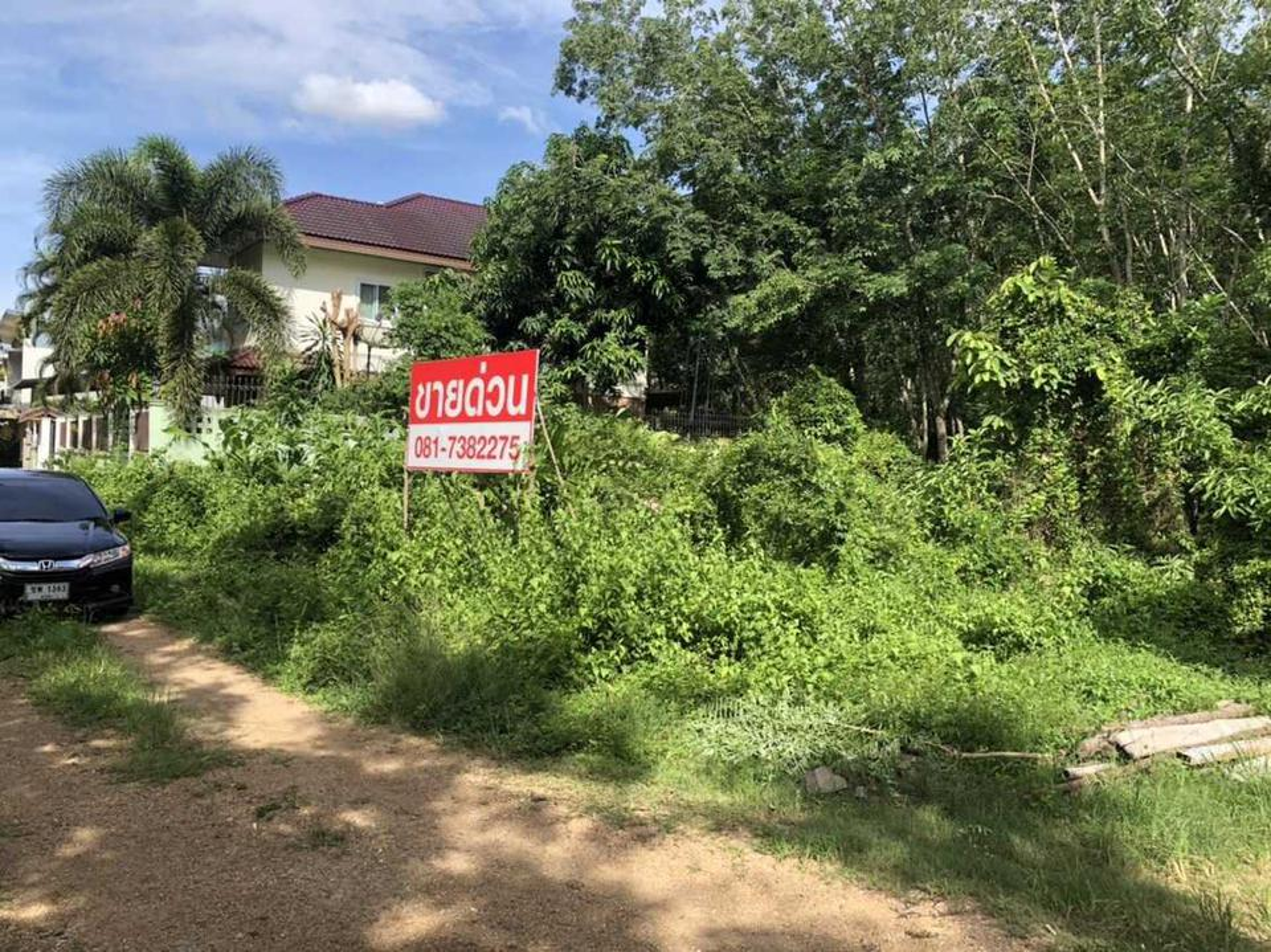 ขายด่วน!!! ที่ดิน พื้นที่ขนาด 94 ตารางวา บ้านหนองนายขุ้ย ไม่ไกลจากถนนใหญ่สายลพบุรีราเมศวร์ อ.หาดใหญ่ จ.สงขลา รูปที่ 3