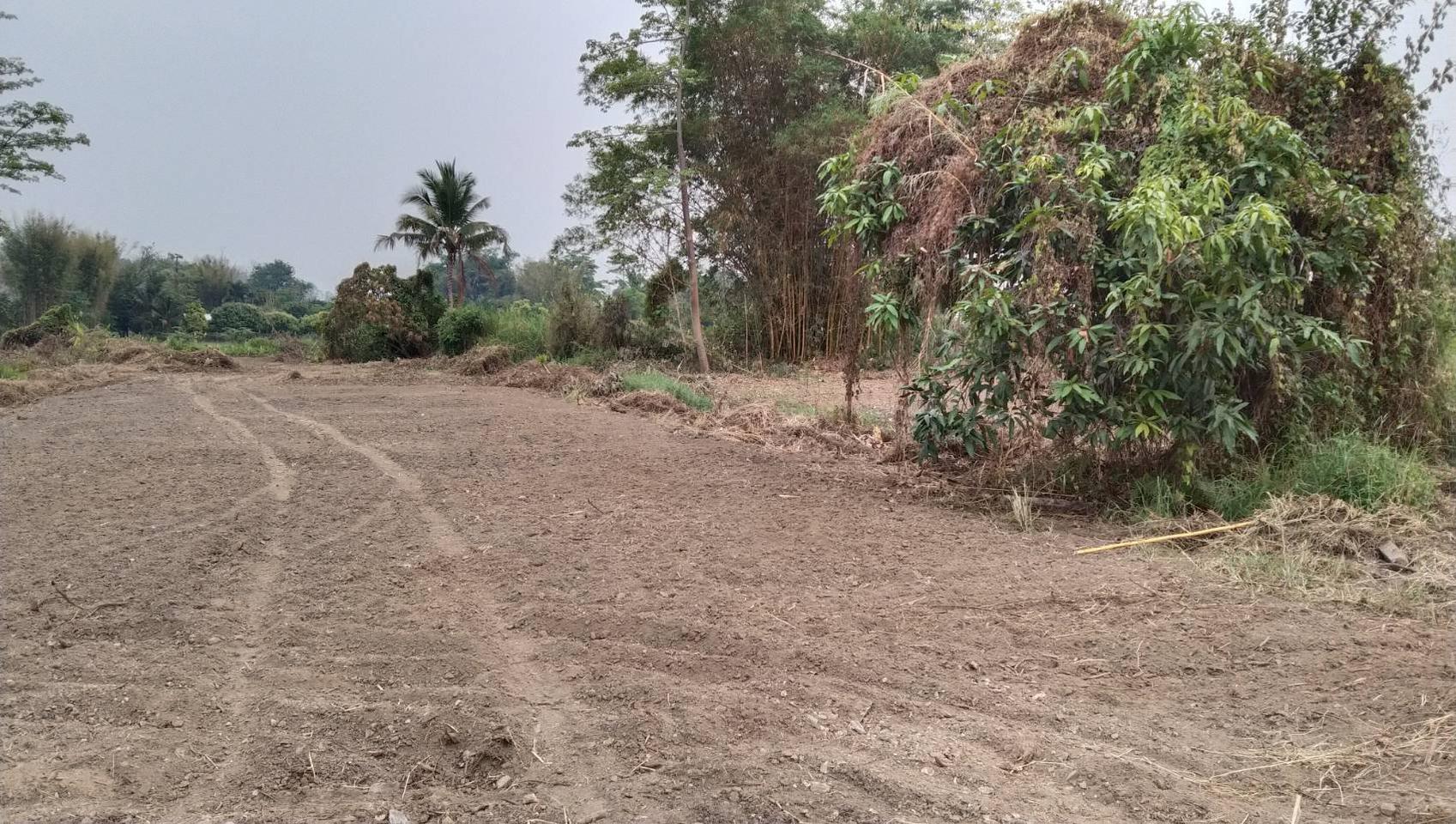 ขายที่ดิน สำหรับที่อยู่อาศัย และทำการเกษตร รูปที่ 3
