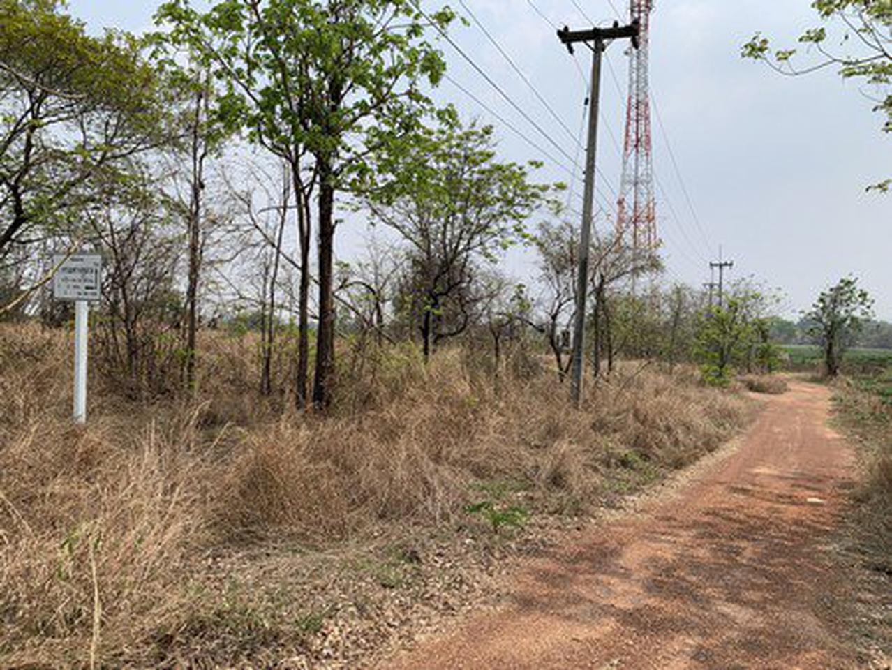 ขายที่ดินเปล่า จังหวัดอุดรธานี อยู่บนถนนมิตรภาพ เนื้อที่ 52 ไร่ 40 ตารางวา รูปที่ 1