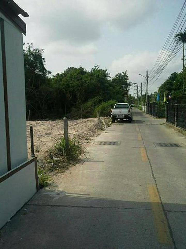 Sale of land plot 220 sqw. Or about 880 sqm. Ideal for an ap รูปที่ 1