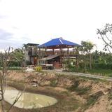 สำหรับใครมองหาบ้านและฟาร์มในฝัน ที่นี่พร้อมขายที่ดินพร้อมบ้านและธุรกิจ แม่ริม เชียงใหม่