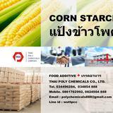 Corn Starch, คอร์นสตาร์ช, คอร์นสตาร์ท, สตาร์ชข้าวโพด
