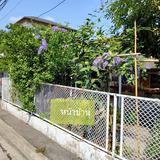 ขายบ้านพร้อมที่ดิน  171 ตารางวา  ในหมู่บ้านโอฬาร 1  เนื้อที่เยอะ ใช้สอยได้เพียบเลยค่ะ
